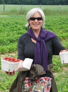 Erdbeeren pfluecke