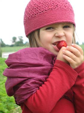 Erdbeeren essen